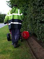 power edging grass verge