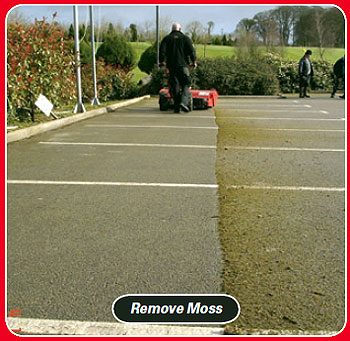 power sweeper to remove moss